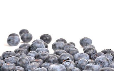 Blueberry isoalted on white spilling nto background, suitable copy space.
