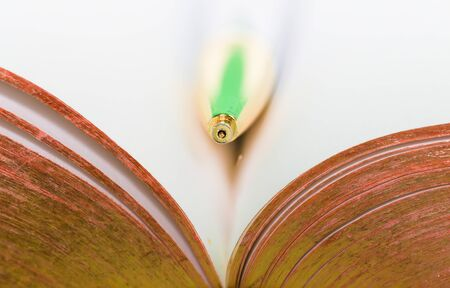 Macro over bible pages, open book with gold gilded pages.