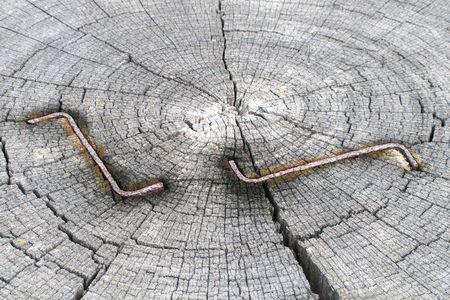 staples: staples on the wood Stock Photo