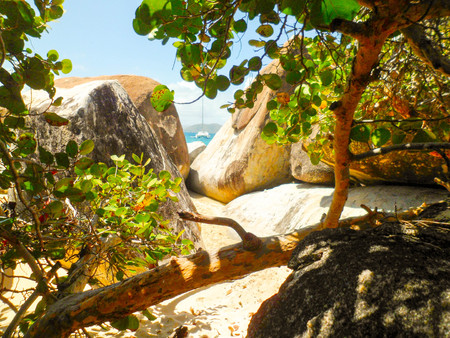 Among the rocks and vegetation of the British Virgin Islands, the Caribbean pearls, the sea in the background