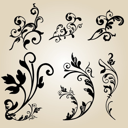 Calligraphic flower design elements and page decoration - lots of useful elements to embellish your layout