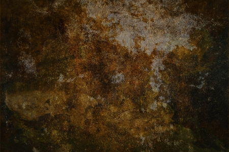 hi res grunge texture background with spot and feather Stock Photo - 14123165