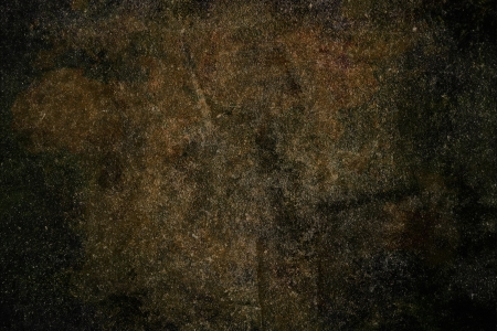 hi res grunge texture background with spot and feather Stock Photo - 14123163