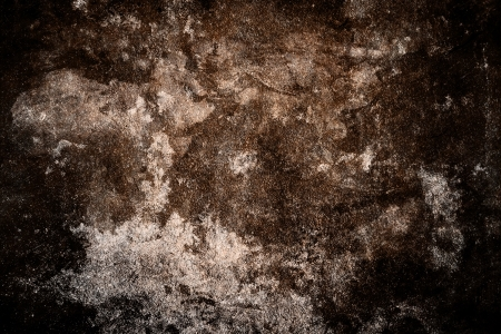 hi res grunge texture background with spot and feather Stock Photo - 14123192
