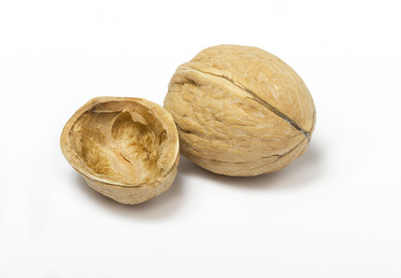pessimist: Details of empty walnut shell and walnut  Stock Photo