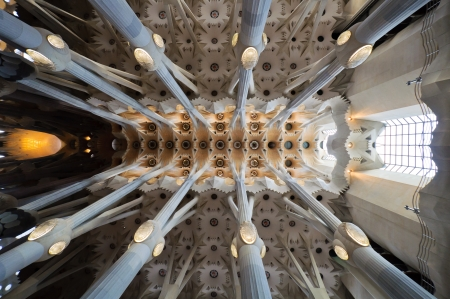 Sagrada Familia cathedral architecture ceiling  Masterpiece of modernism architect Antoni Gaudi  Barcelona, Spain