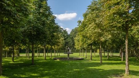 Sanssouci Park trees  Potsdam, Germany  Standard-Bild