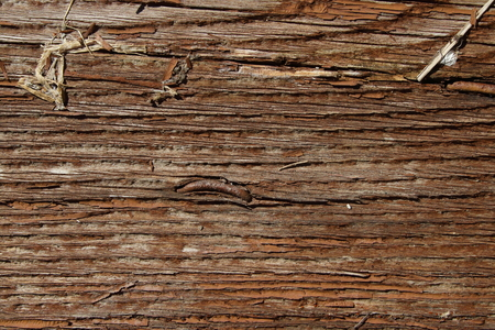 wooden board close up, texture background Stok Fotoğraf