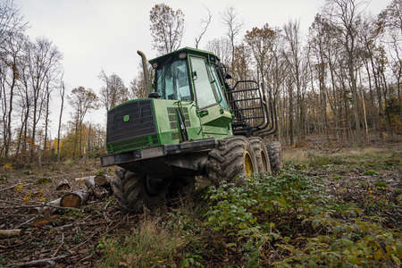 A Holzrücker - vehicle in the timber industry for transporting harvested wood from the stock to the storage area or for loading onto transport vehicles - in a clearing in the autumn forest Фото со стока