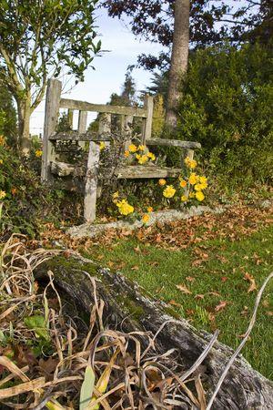 Beautiful old wooden garden bench in autumn Stock Photo
