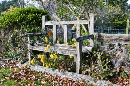 Old wooden garden bench surrounded by fallen leaves