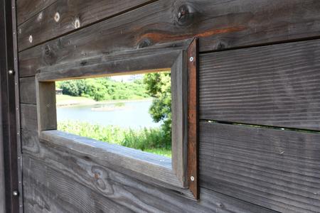 observation: bird observation hut