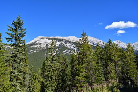 sulphur: Sulphur mountain Stock Photo