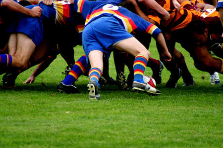 rugby field: Two opposing rugby teams pack down a scrum as the ball is put in.  Space for copy below.