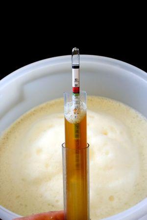 brewing: Brewing Home brew beer
