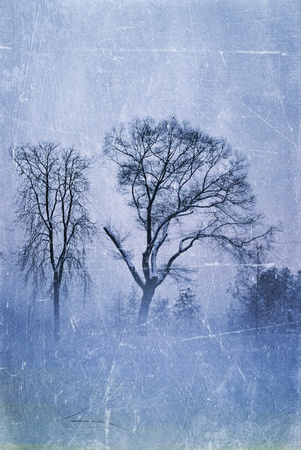 grungy winter trees Stock Photo