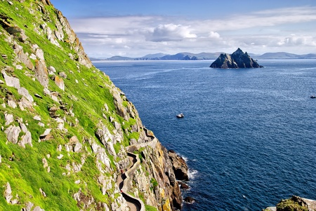 Small Kellig, worlds second largest colony of gannets seen from a vantage point on Skellig Micheal, Kerry, Ireland