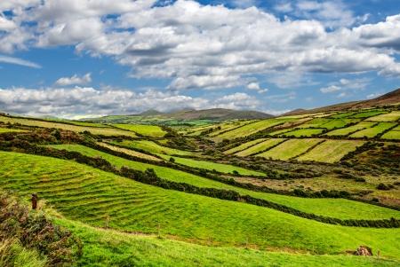 soleado paisaje de montaña verde en la península de Dingle, Irlanda
