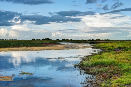 Shannon river landscape, County Offaly, Ireland Stock Photo