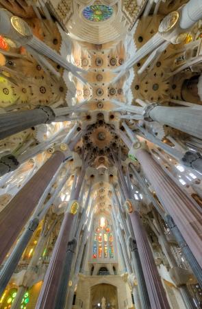 Interior of La Sagrada Familia - basilica designed by Antoni Gaudi, started in 1882 and still under construction at August 04, 2013 in Barcelona, Spain