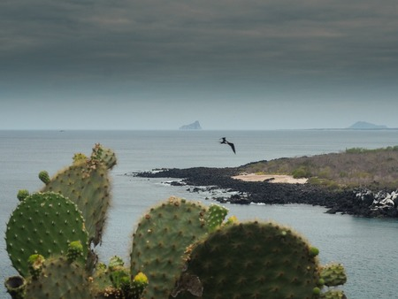 Overviewing the pacific and Kicker rock over the cactus landscape of Galapagos, Ecuador