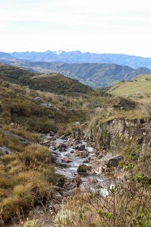 Páramo with frailejónes in the Sierra Nevada del Cocuy, Colombia 免版税图像