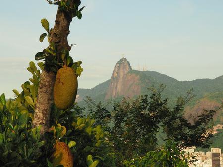 Jackfruit (Jaca) and view of Cristo Redentor, Rio de Janeiro, Brazil Stock Photo