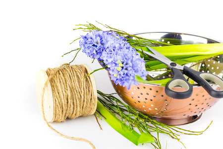 Bouquet of purple hyacinths in a copper bowl against white background. Standard-Bild