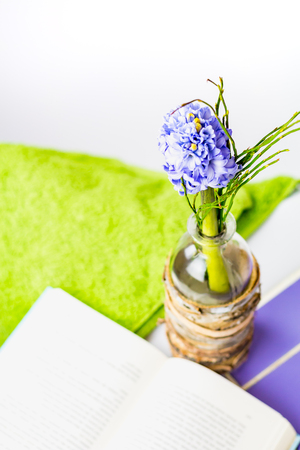 Purple hyacinth and a book at a bathtub. Stock Photo