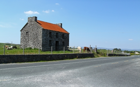 An old stone house with cows near a road photo