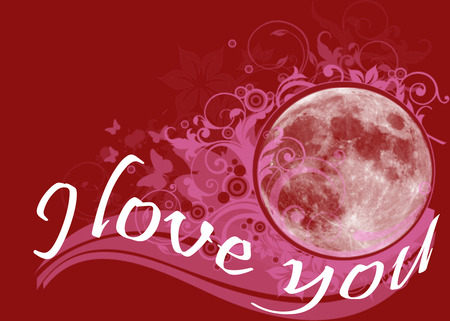 A floral red background with flowers and butterflies around the moon and the text I Love You photo