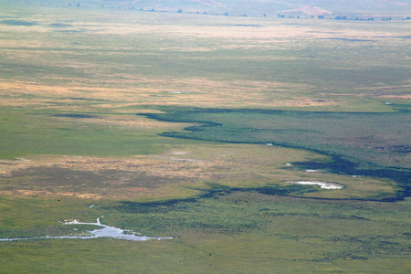 meandering: View of Ngorongoro crater, Tanzania, from the rim with the Munge Stream meandering between the vegetation