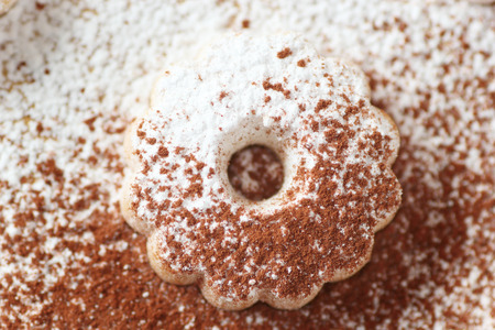 icing sugar: Closeup of an italian canestrelli biscuit sprinkled with icing sugar and cocoa power