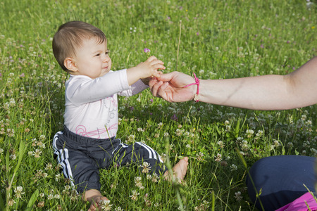 six months: A six months old baby girl sitting on a lawn and picking a flower from an adult hand