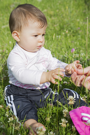 six months: A six months old baby girl sitting on a lawn and picking a flower
