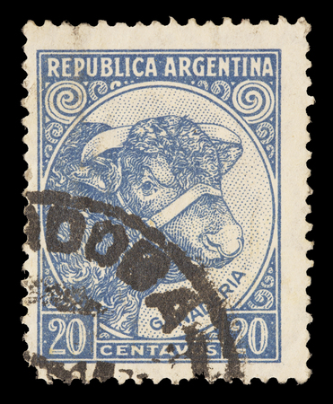 cattle breeding: ARGENTINA - CIRCA 1951: A postage stamp printed in Argentina shows Bull and Cattle Breeding, circa 1951