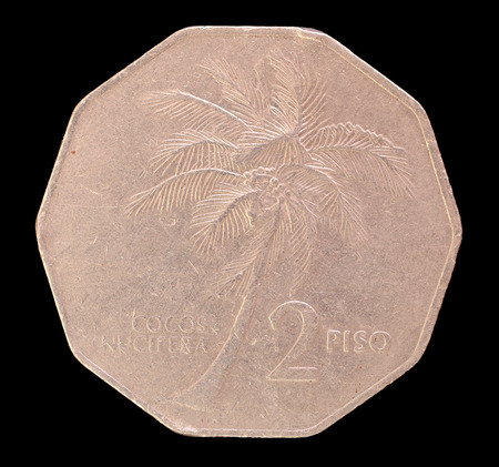 issued: The tail face of a 2 piso coin, issued by the Republic of the Philippines in 1986, depicting a coconut palm, cocos nucifera. Image isolated on black background