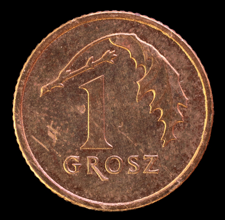 issued: The tail face of 1 grosz coin, issued by Poland in 2013. Image isolated on black background. The grosz is a fraction of zloty