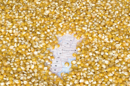 producers: Geographical map of Argentina covered by a background of corn seeds. This nation is the one of the five main producers and exporters of maize. Horizontal image. Stock Photo