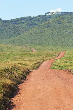 endless road: Endless road surrounded by green savannah in Ngorongoro Conservation Area, Tanzania Stock Photo
