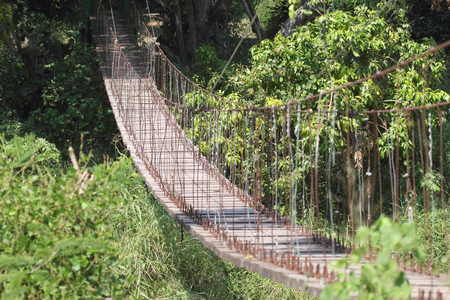 precarious: View on empty wooden suspension bridge in the forest. Serengeti National Park, Tanzania