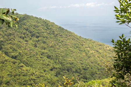 tanganyika: View on the lush wild forest of Gombe Conservation Area, Tanzania, and the great Lake Tanganyika Stock Photo