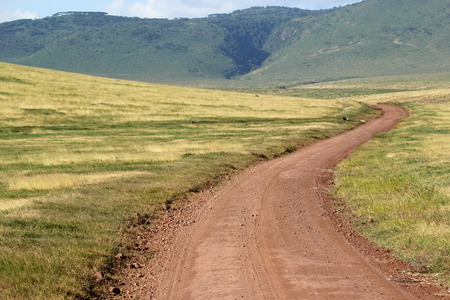 endless road: Endless road surrounded by green land. Ngorongoro Conservation Area, Tanzania Stock Photo