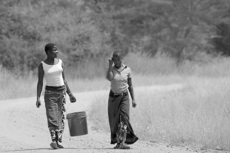 safe water: SERENGETI NATIONAL PARK, TANZANIA - JUNE 11: women bringing a bucket of water on June 11, 2013 in Serengeti National Park. Millions of people in Tanzania dont have access to safe water Editorial