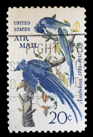illustrated: UNITED STATES OF AMERICA - CIRCA 1967: A used postage stamp printed in United States shows a couple of blue birds painted by the ornithologist and naturalist John James Audubon, circa 1967