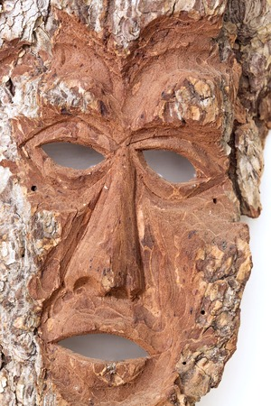 bark carving: Wooden pine bark with carving of mans face Stock Photo