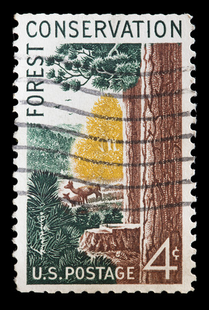 glimpse: UNITED STATES OF AMERICA - CIRCA 1958: A used postage stamp printed in United States shows a glimpse of the forest with deer on a glade, circa 1958