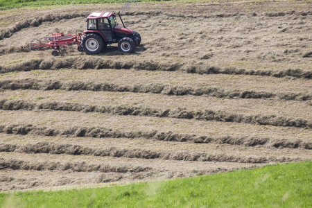 husks: A thrashing machine at work on a field. Thresher are used for the separation of grain from stalks and husks Stock Photo