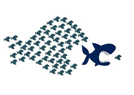 Große Fische fressen kleine Fische