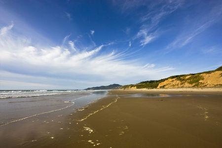 オレゴン州の海岸沿いの美しいビーチ。